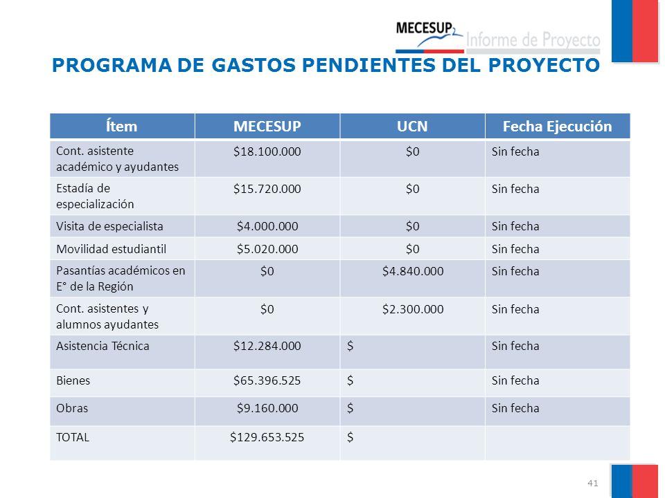 PROGRAMA DE GASTOS PENDIENTES DEL PROYECTO