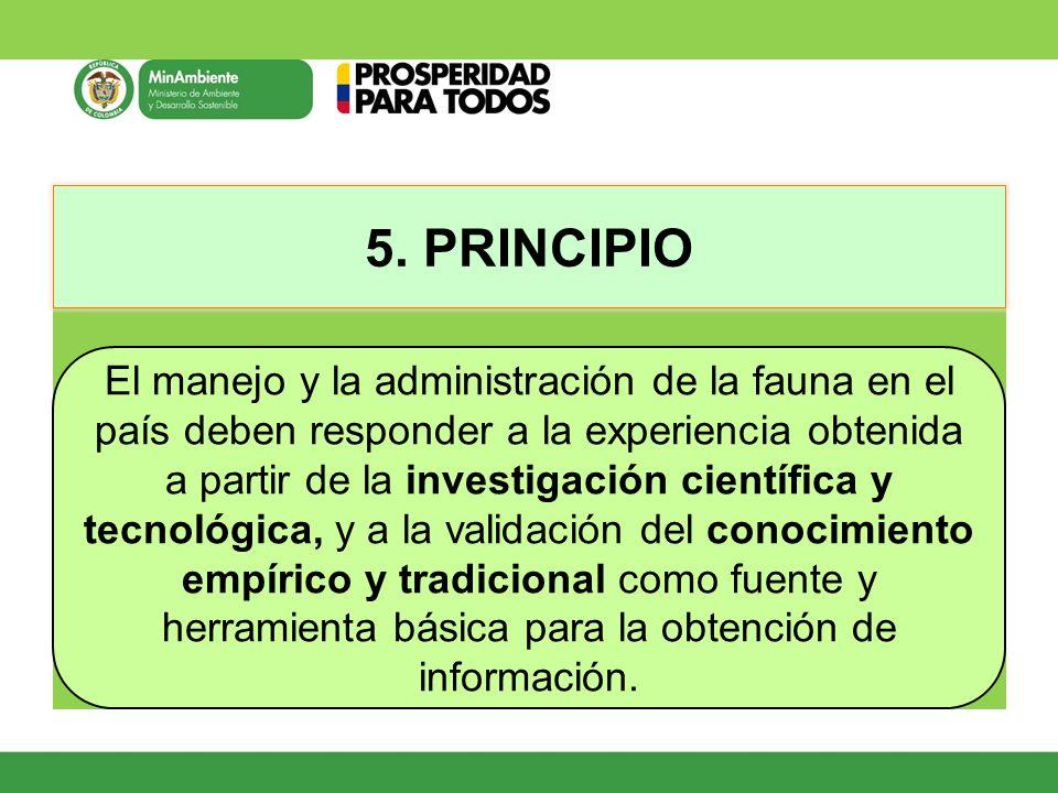 5. PRINCIPIO