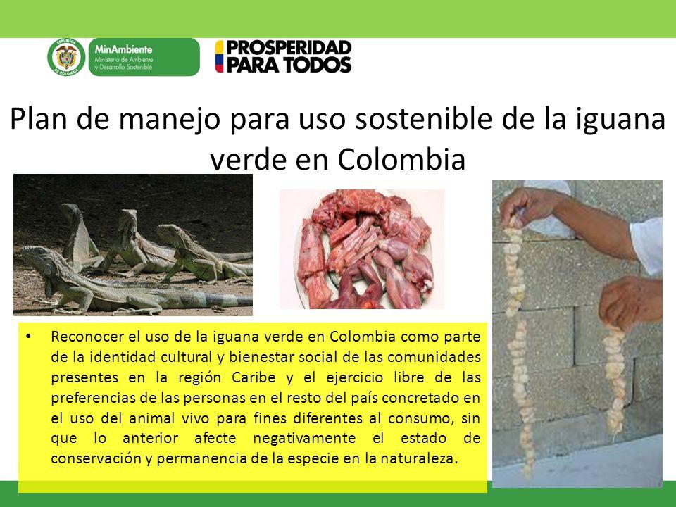Plan de manejo para uso sostenible de la iguana verde en Colombia
