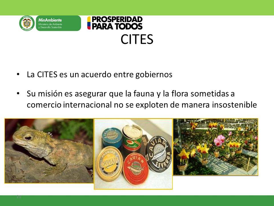 CITES La CITES es un acuerdo entre gobiernos
