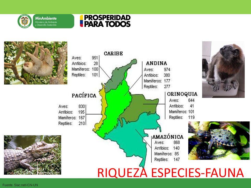 RIQUEZA ESPECIES-FAUNA