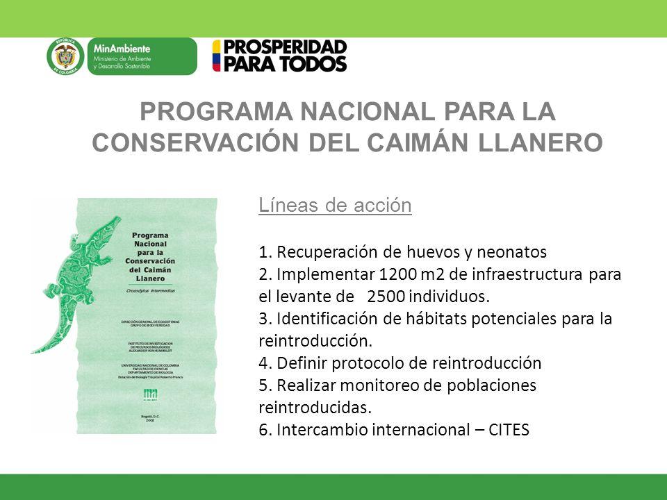 PROGRAMA NACIONAL PARA LA CONSERVACIÓN DEL CAIMÁN LLANERO