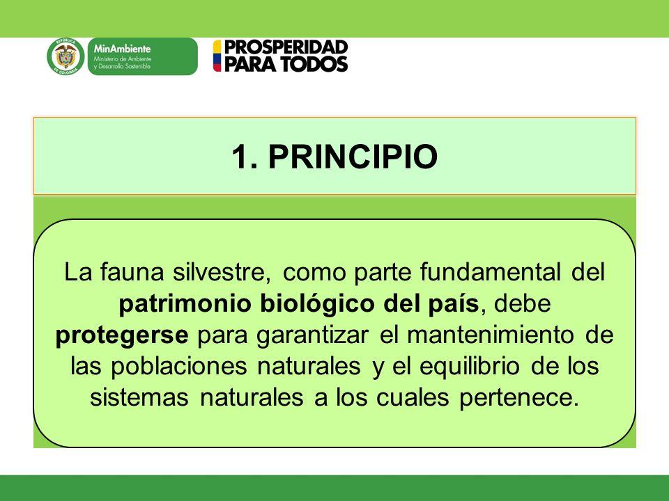 1. PRINCIPIO