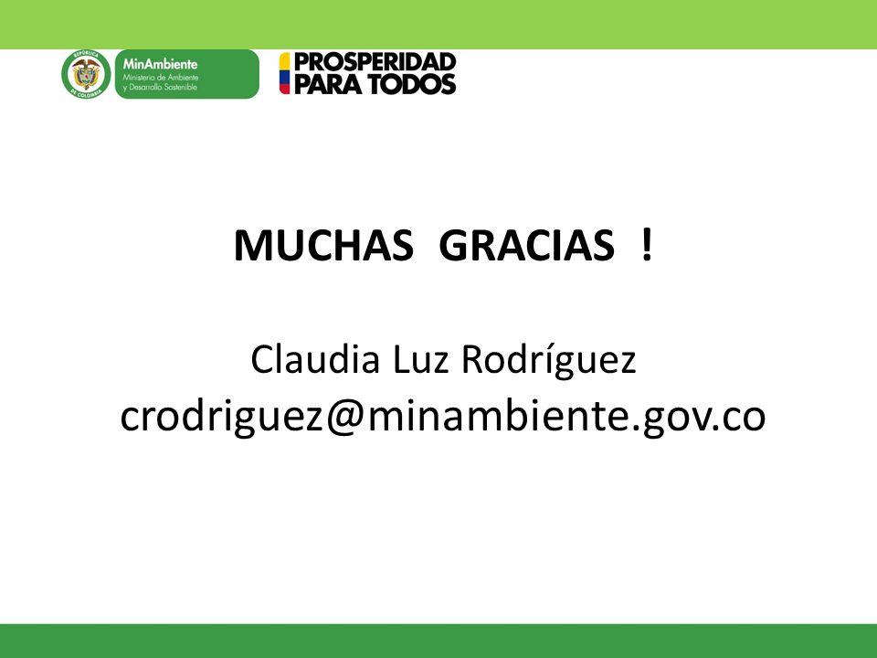 MUCHAS GRACIAS ! Claudia Luz Rodríguez crodriguez@minambiente.gov.co