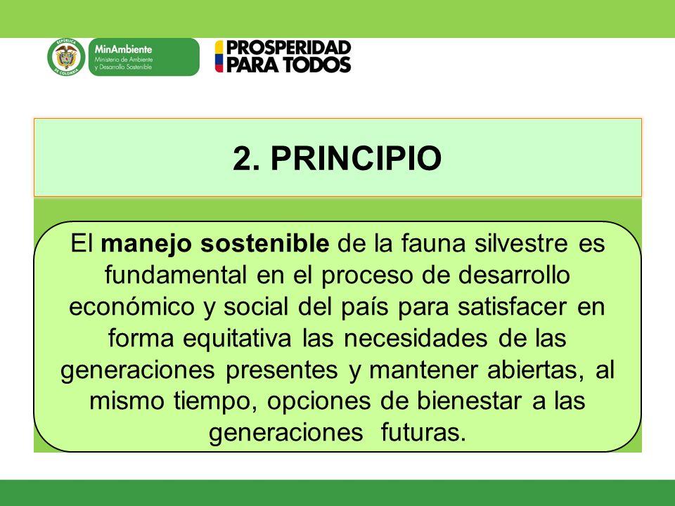 2. PRINCIPIO