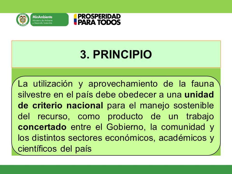 3. PRINCIPIO