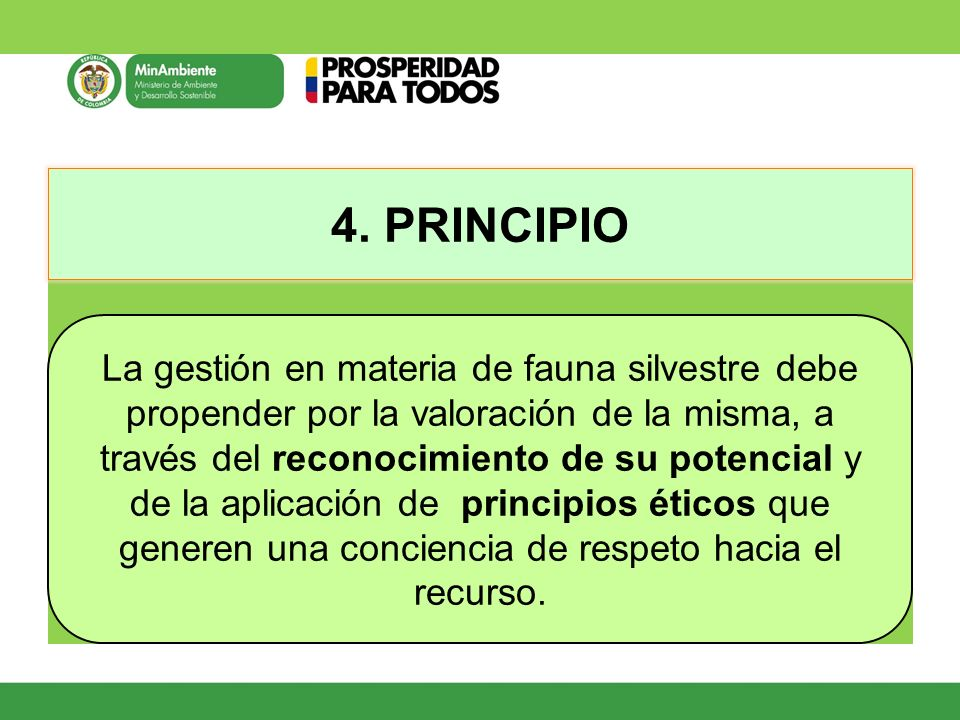 4. PRINCIPIO