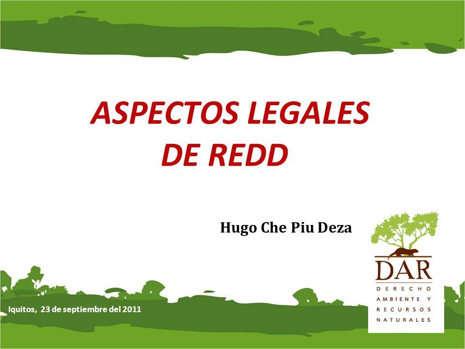 ASPECTOS LEGALES DE REDD