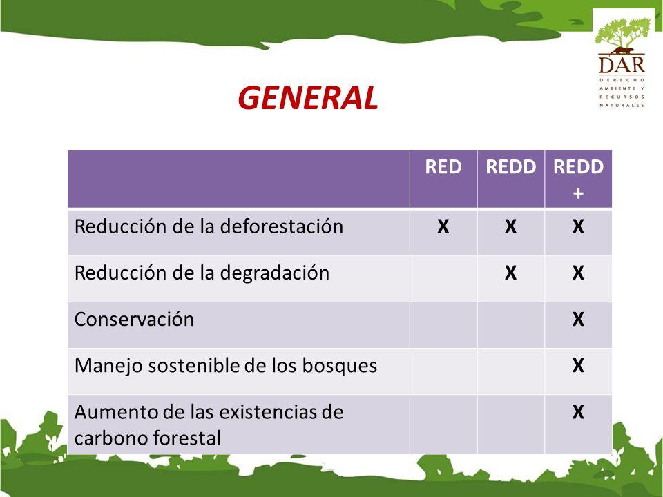 GENERAL RED REDD REDD+ Reducción de la deforestación X