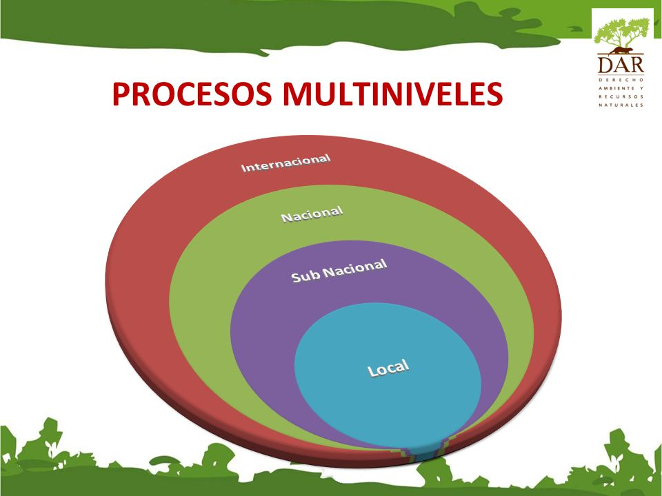 PROCESOS MULTINIVELES