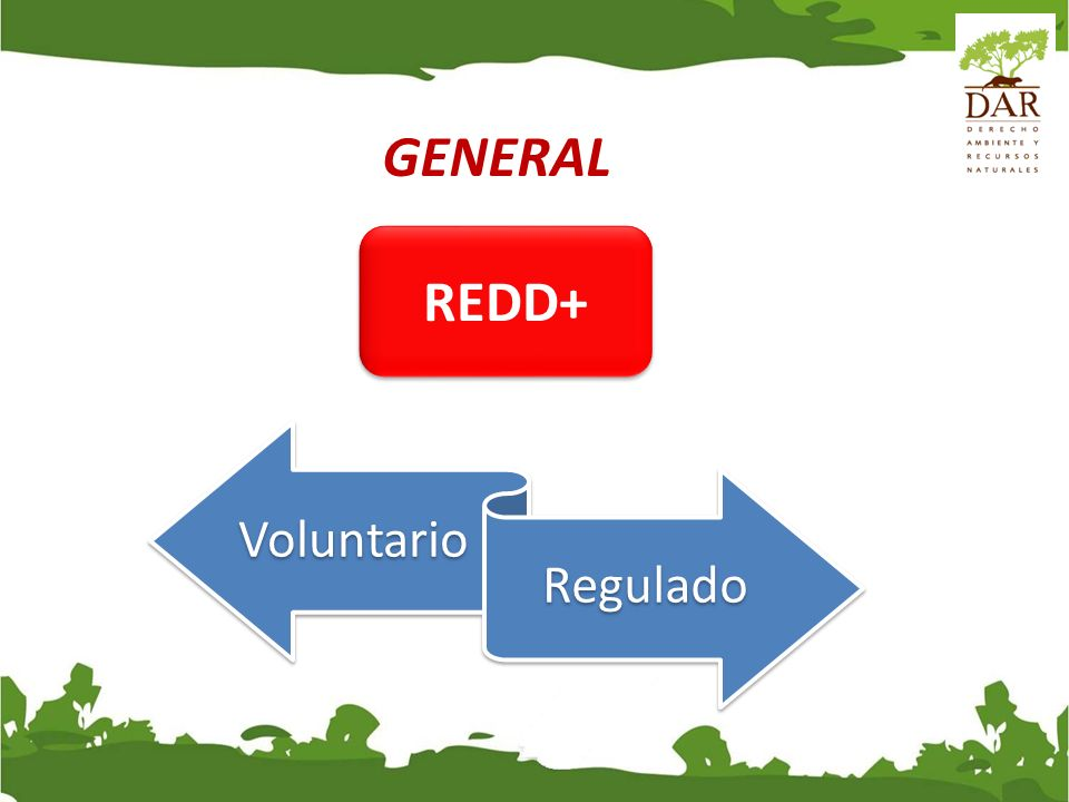 GENERAL REDD+ Voluntario Regulado