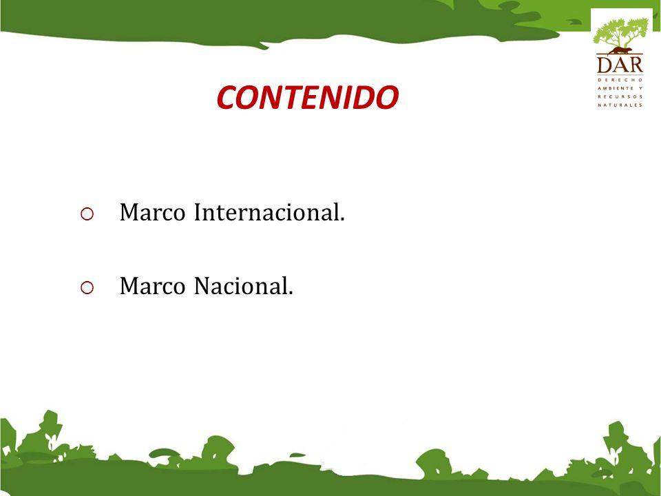 CONTENIDO Marco Internacional. Marco Nacional.