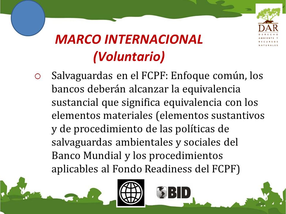 MARCO INTERNACIONAL (Voluntario)