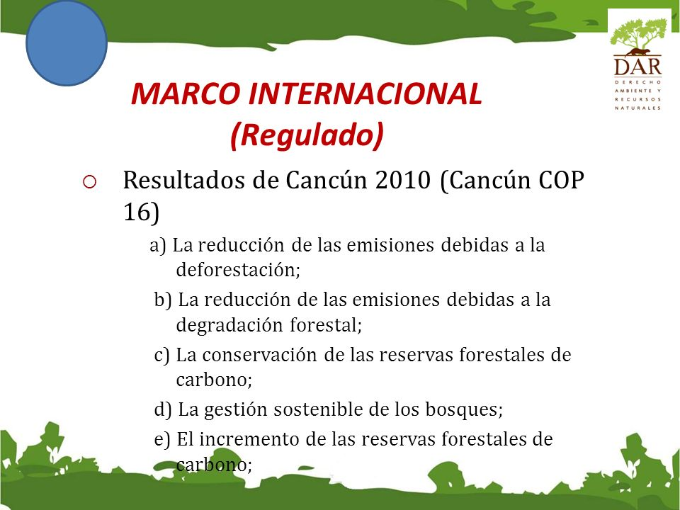MARCO INTERNACIONAL (Regulado)