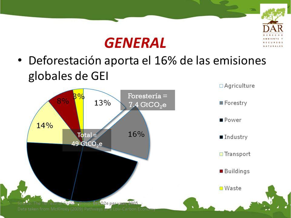 GENERAL Deforestación aporta el 16% de las emisiones globales de GEI
