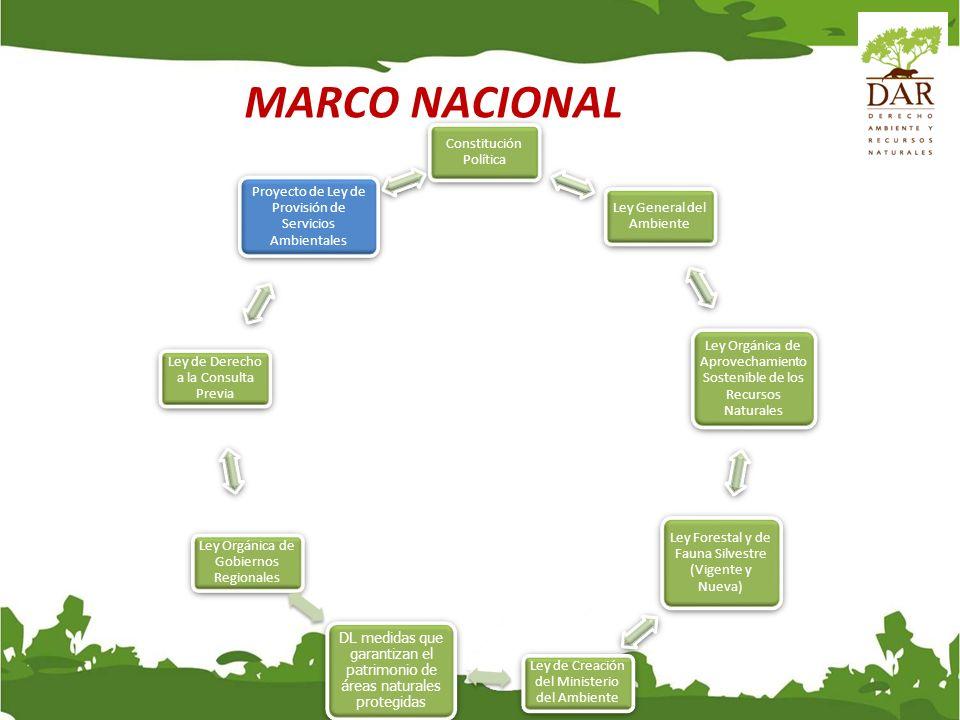 MARCO NACIONAL Constitución Política Ley General del Ambiente