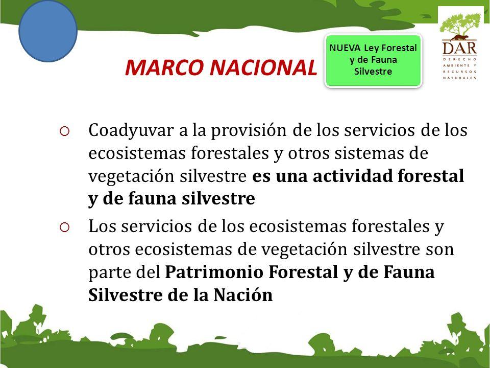 NUEVA Ley Forestal y de Fauna Silvestre