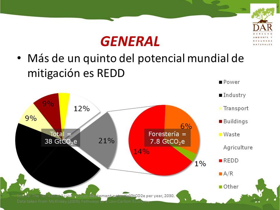 GENERAL Más de un quinto del potencial mundial de mitigación es REDD