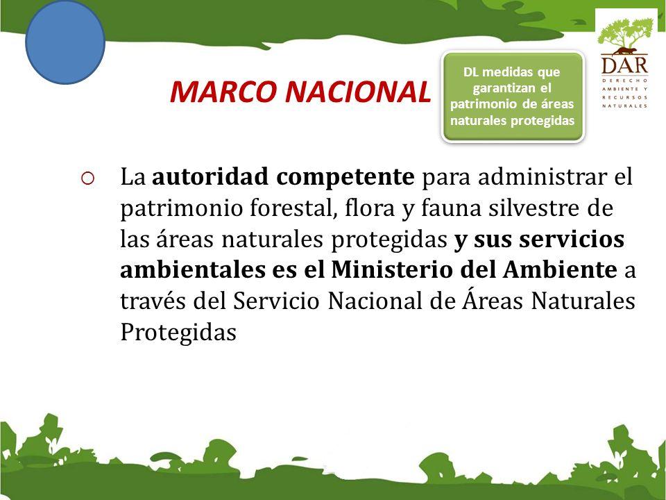 DL medidas que garantizan el patrimonio de áreas naturales protegidas