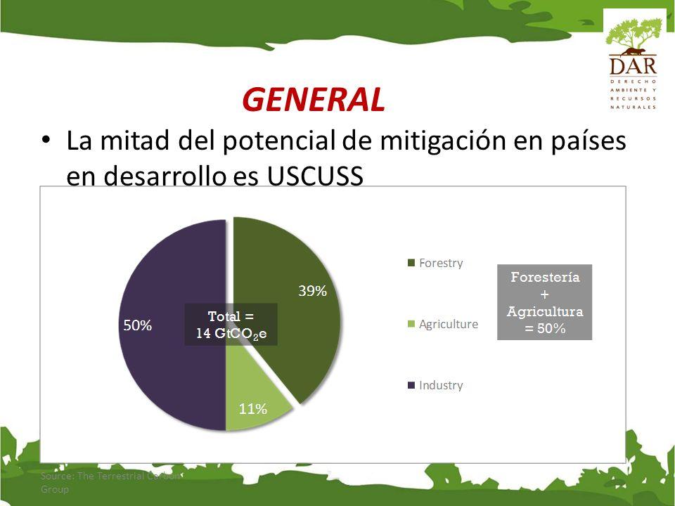 GENERAL La mitad del potencial de mitigación en países en desarrollo es USCUSS.
