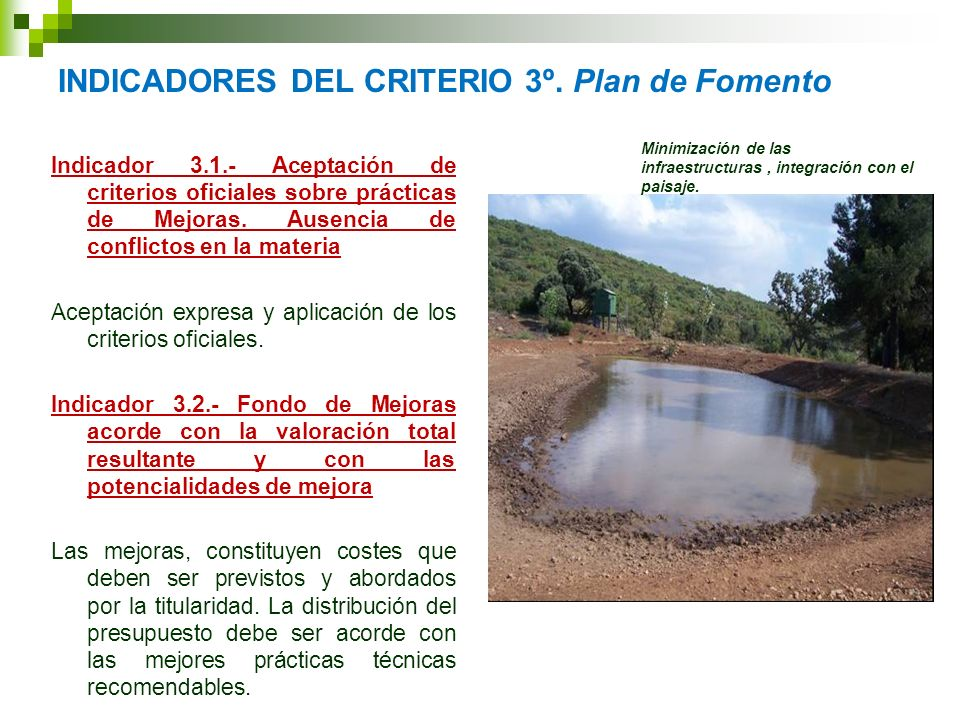 INDICADORES DEL CRITERIO 3º. Plan de Fomento