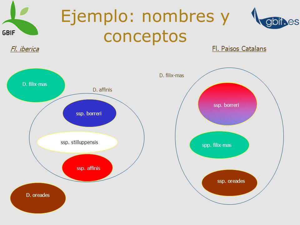 Ejemplo: nombres y conceptos