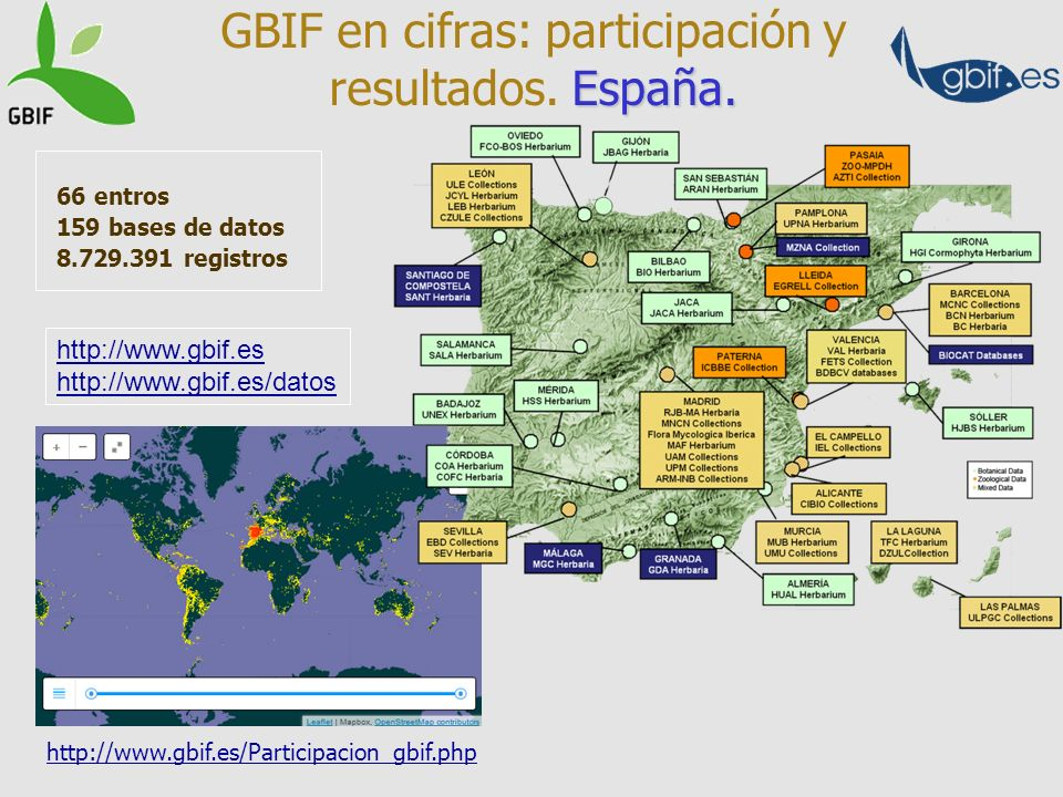 GBIF en cifras: participación y resultados. España.
