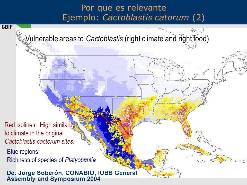 Por que es relevante Ejemplo: Cactoblastis catorum (2)
