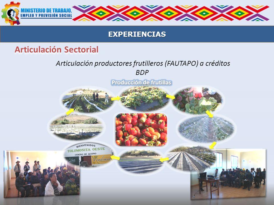 Articulación productores frutilleros (FAUTAPO) a créditos BDP