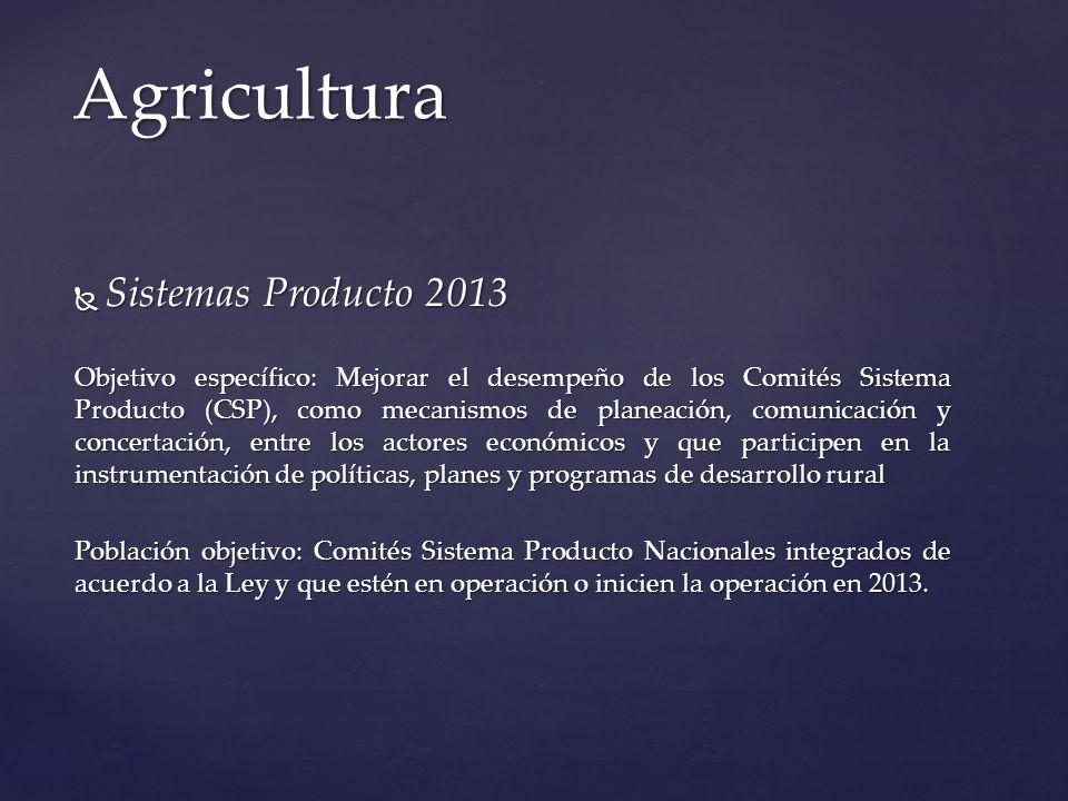 Agricultura Sistemas Producto 2013