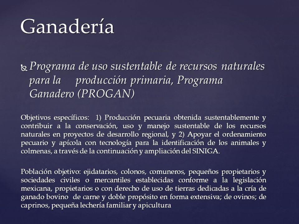 Ganadería Programa de uso sustentable de recursos naturales para la producción primaria, Programa Ganadero (PROGAN)