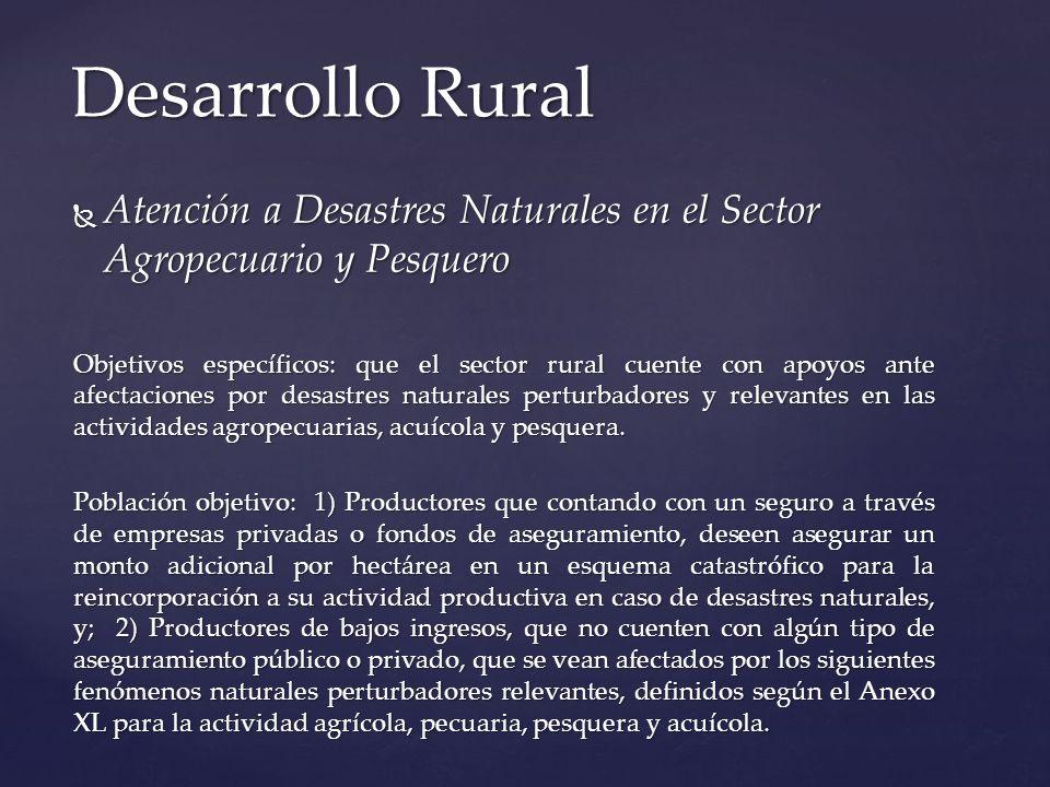 Desarrollo Rural Atención a Desastres Naturales en el Sector Agropecuario y Pesquero.
