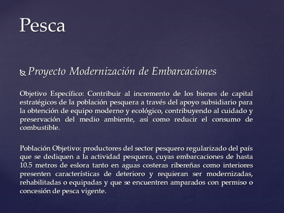 Pesca Proyecto Modernización de Embarcaciones