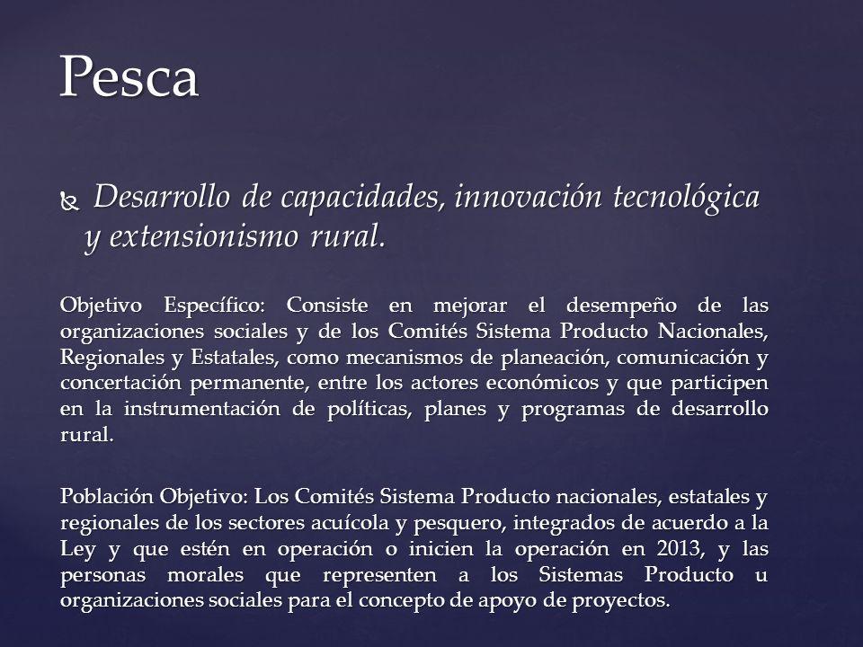 Pesca Desarrollo de capacidades, innovación tecnológica y extensionismo rural.