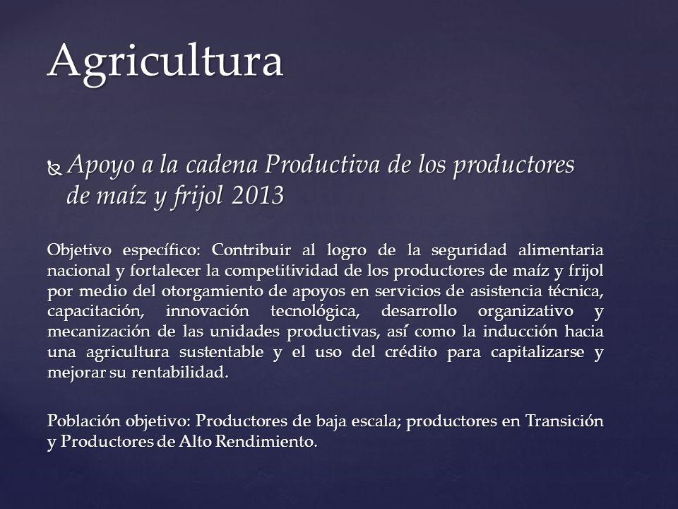 Agricultura Apoyo a la cadena Productiva de los productores de maíz y frijol 2013.