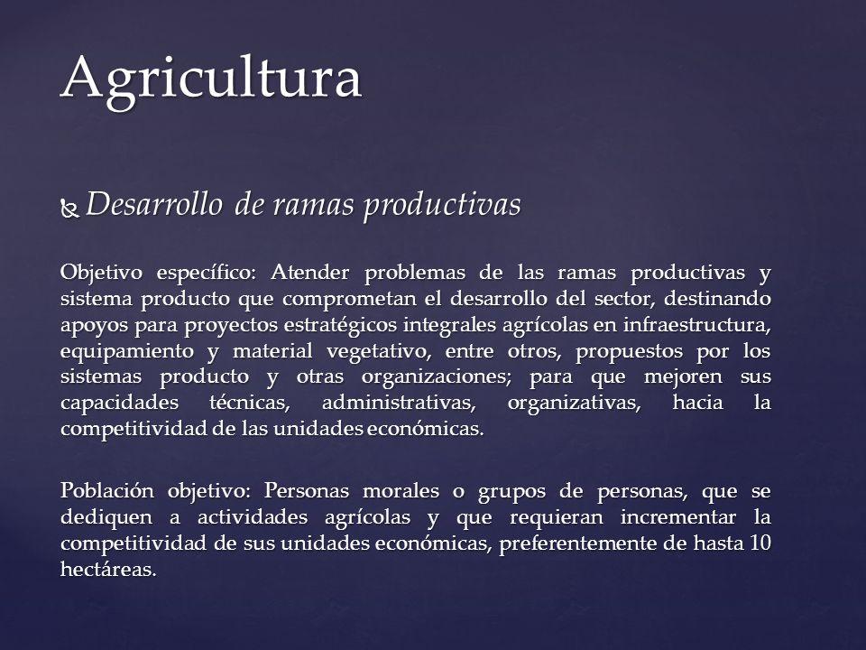 Agricultura Desarrollo de ramas productivas