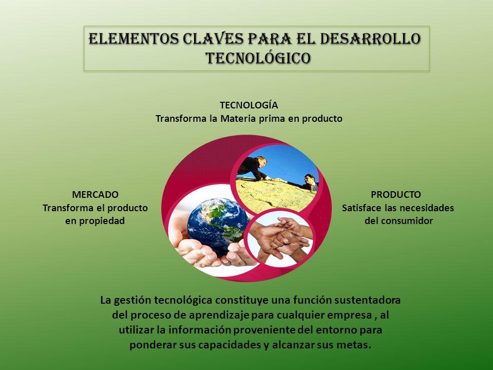 ELEMENTOS CLAVES PARA EL DESARROLLO TECNOLÓGICO