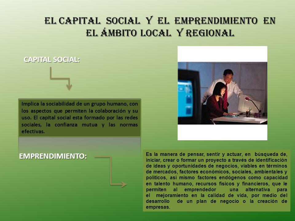 El capital Social y el emprendimiento en el ámbito local y regional