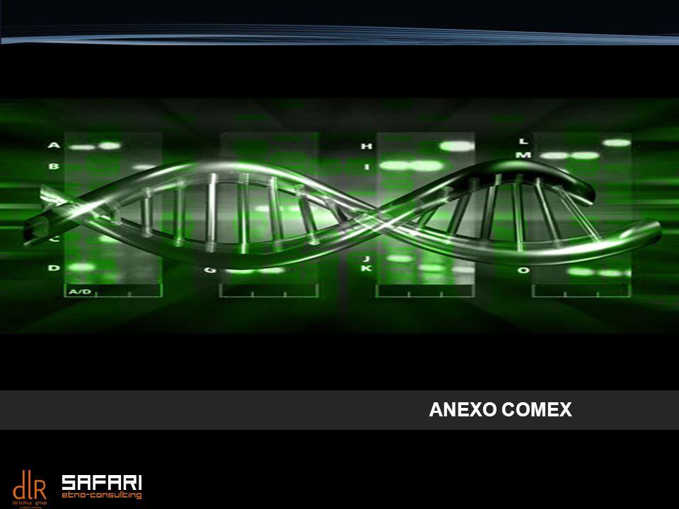 ANEXO COMEX 1