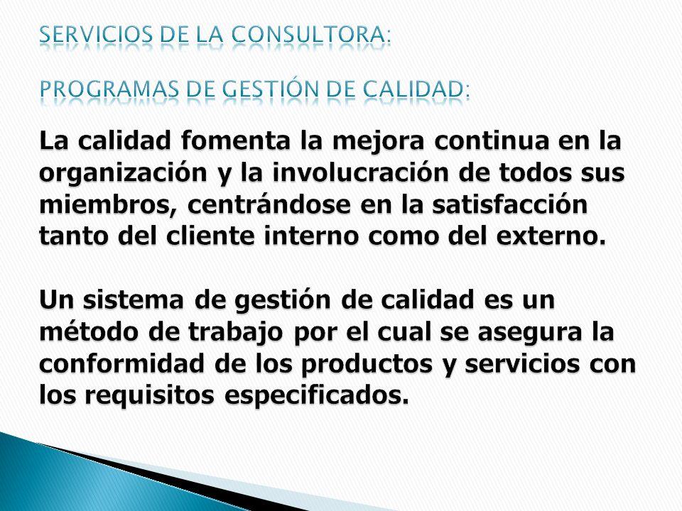 Servicios de la consultora: Programas de gestión de calidad: La calidad fomenta la mejora continua en la organización y la involucración de todos sus miembros, centrándose en la satisfacción tanto del cliente interno como del externo.