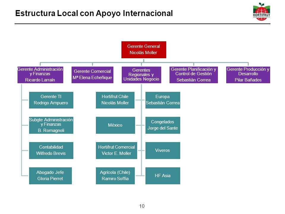 Estructura Local con Apoyo Internacional
