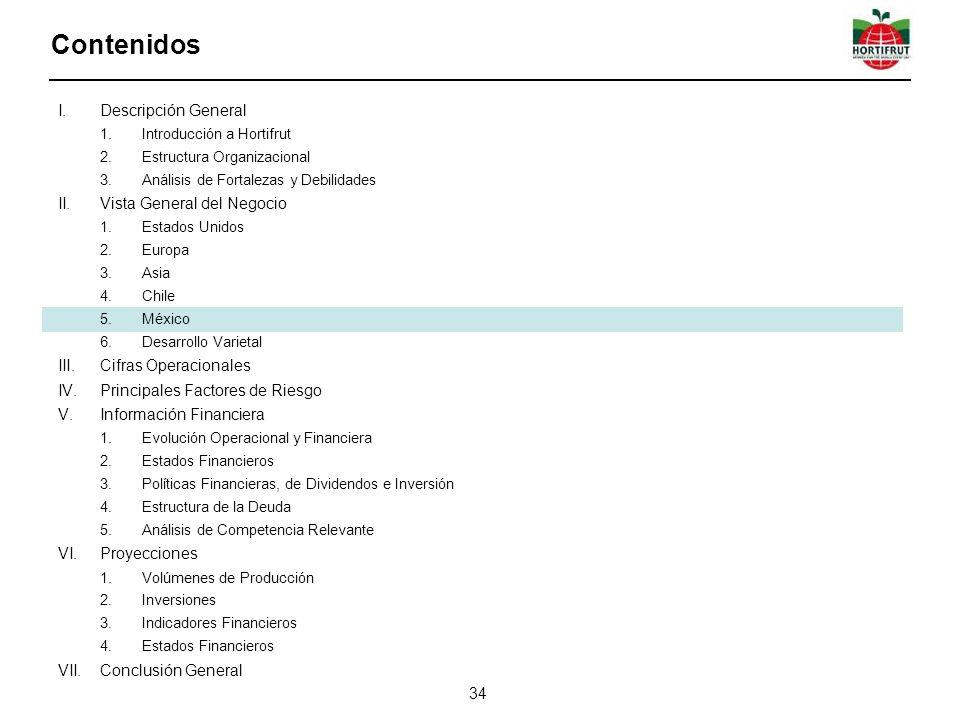 Contenidos Descripción General Vista General del Negocio