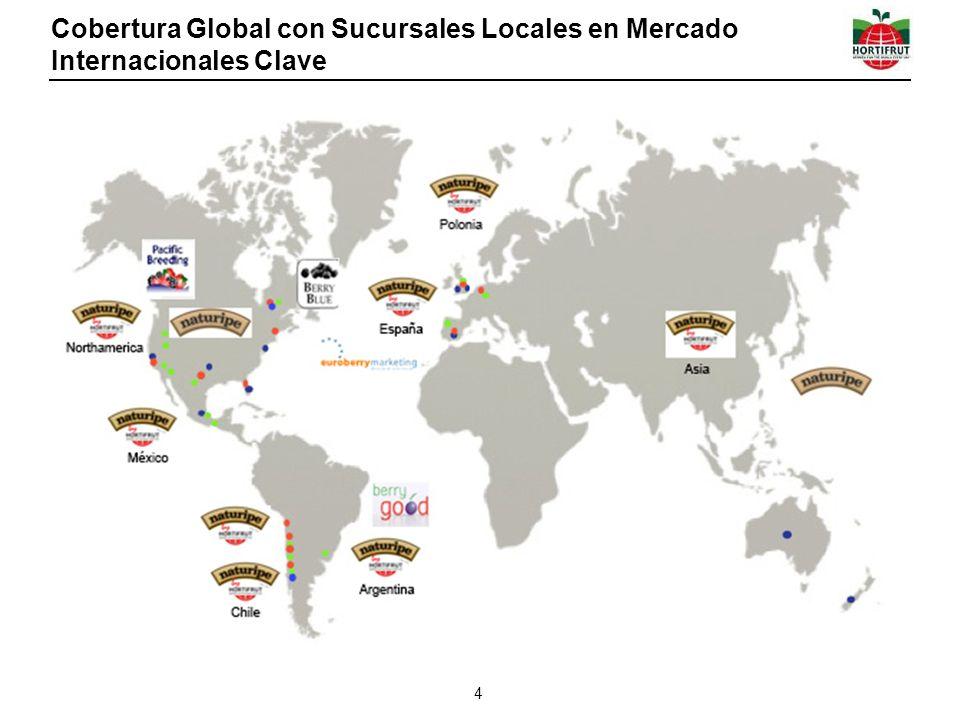 Cobertura Global con Sucursales Locales en Mercado Internacionales Clave