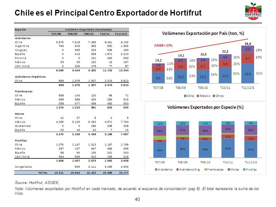 Chile es el Principal Centro Exportador de Hortifrut