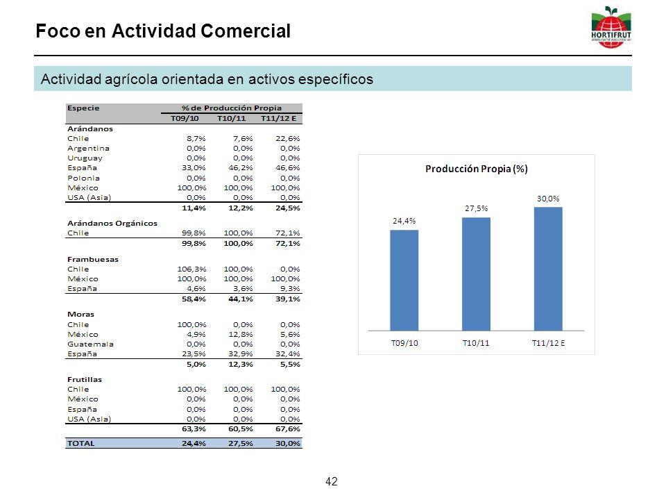 Foco en Actividad Comercial