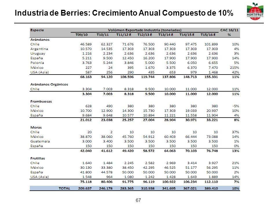 Industria de Berries: Crecimiento Anual Compuesto de 10%