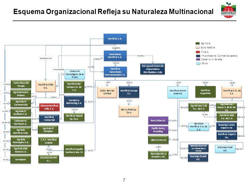 Esquema Organizacional Refleja su Naturaleza Multinacional
