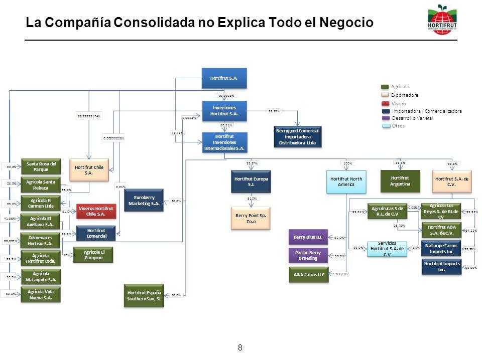 La Compañía Consolidada no Explica Todo el Negocio