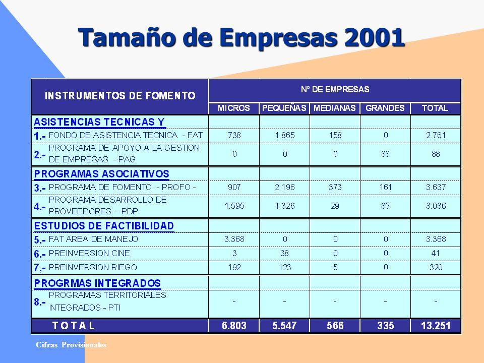 Tamaño de Empresas 2001 Cifras Provisionales