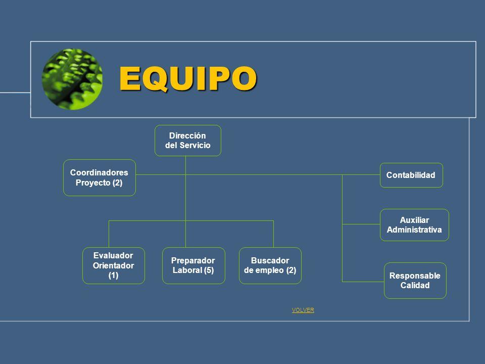 EQUIPO Dirección del Servicio Coordinadores Proyecto (2) Contabilidad